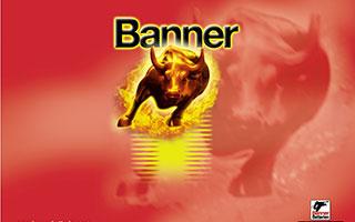 banner-logo_1